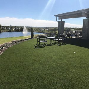 Artificial turf backyard overlooks Southern Illinois golf course and lake